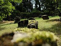 Древнее еврейское кладбище в Майнце