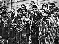 Концлагерь в Польше. 1945 год