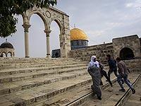 Девочка нашла амулет с Храмовой горы, обреченный Вакфом на уничтожение