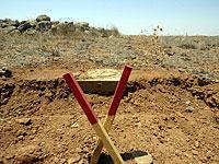 В Ираке погиб британский сапер
