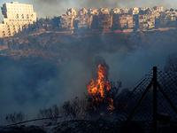Хайфа. 24 ноября 2016 года