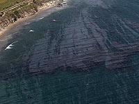 На юге Малайзии в результате столкновения двух судов разлилось 300 тонн нефти