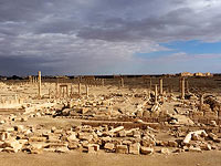 Пальмира (архив)