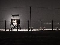 """У входа в мемориальный комплекс Освенцим 14 человек устроили """"голую акцию"""""""