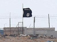 """В Сирии уничтожен один из ближайших """"соратников"""" лидера """"ИГ"""""""