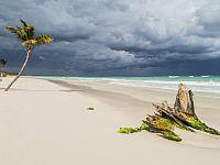 Накануне дождя на мексиканском побережье