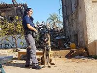 Авиталь Цуриэль  на месте пожара в Сдероте, 29 ноября 2017 года