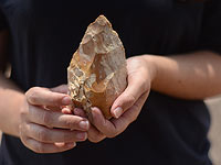 Полмиллиона лет истории: в округе а-Шарон найдена сохранившаяся стоянка предков человека