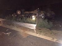 На севере Израиля автомобиль столкнулся с коровой, водитель погиб